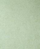 Ламинированная панель ПВХ Век 2,7х0,25м Орхидея зеленая