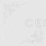 Металлический кассетный потолок с кассетой 300х300мм Cesal 047 Серебряное кружево