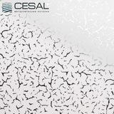 Металлический кассетный потолок с кассетой 300х300мм Cesal B34 Иней белый