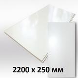 Панель ПВХ 2,2х0,25м Белая матовая