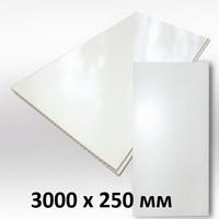 Панель ПВХ 3х0,25м Белая матовая