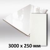 Панель ПВХ 3х0,25м Белая глянцевая