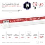 Светодиодная лампа (ECO LED) G13 Трубка Т8 1200мм 18Вт 6500К Холодный свет Эра ECO LED T8-18W-865-G13-1200mm Матовая колба, Неповоротный цоколь