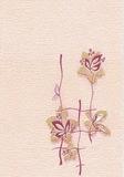 Панель ПВХ 2,7х0,25м Орхидея розовая