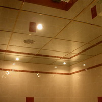 Потолок из зеркал Серебро 600х600мм